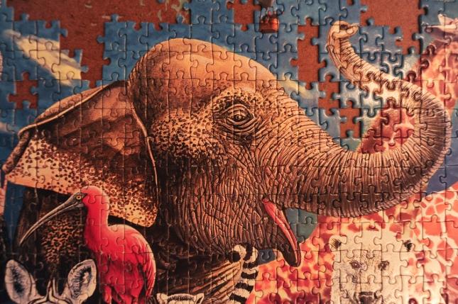 Elephant for Gavin's Gang